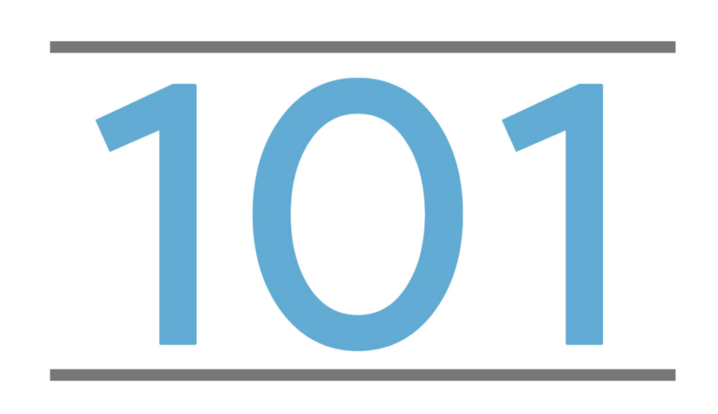 The number 101